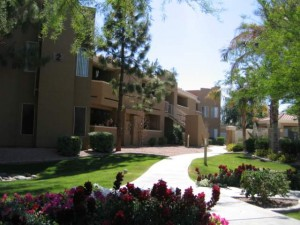 phoenix apartments: allegro